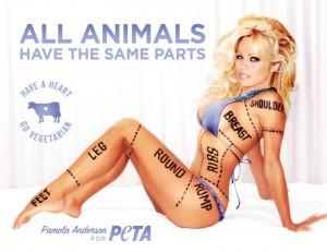 Pamela Anderson pour Peta