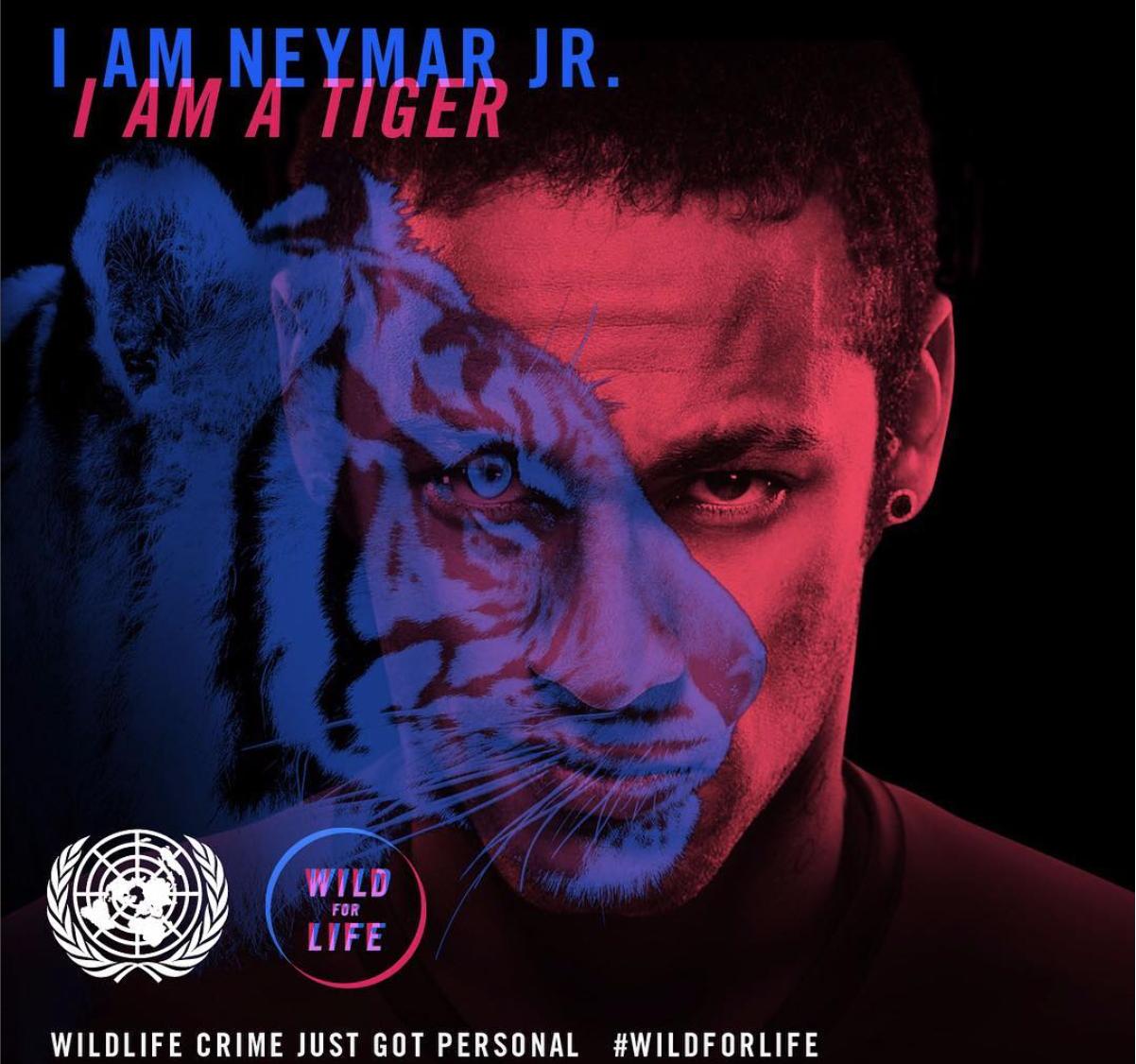 """""""I AM NEYMAR JR. ; I AM A TIGER"""" freedomstyle parle de Neymar FREEDOMSTYLE SUR CANABLOG 9"""